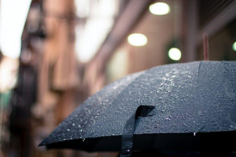 Hvorfor du altid bør have en paraply i bagagerummet
